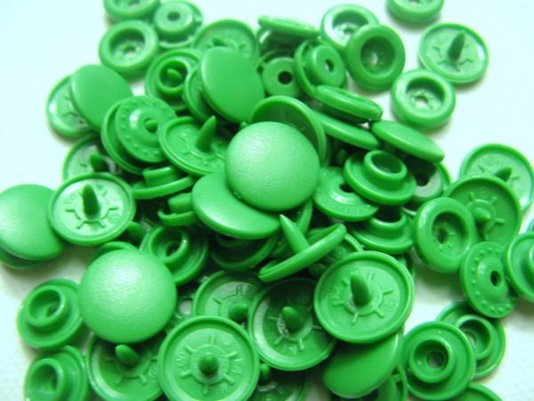 Snap | T5 | 20st | matt | B51 | grün