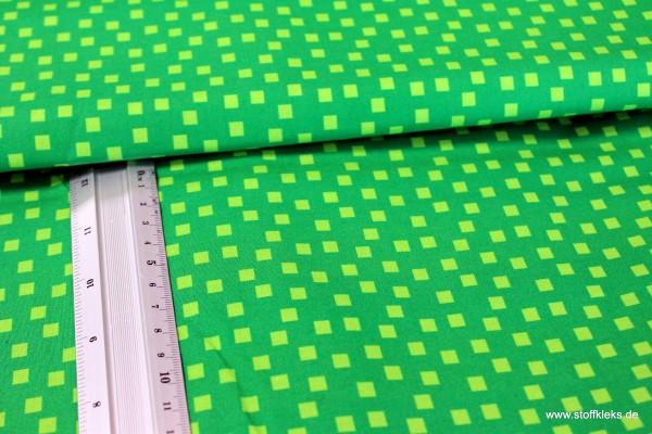 Baumwolle | bedruckt | Quadrate | grün