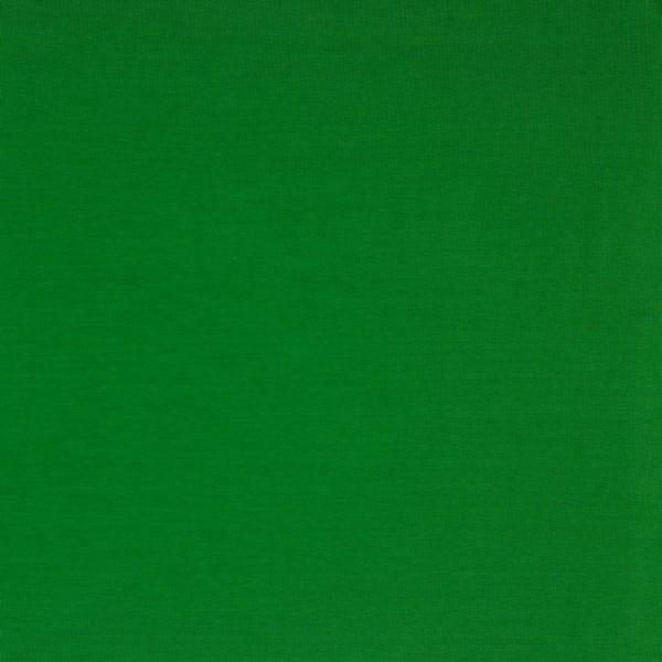 Jersey | Uni | grün